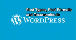 Post Type, Post Format and Taxonomy in WordPress